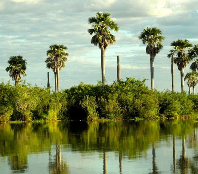 6 Days Safari in Selous & Ruaha National Park4